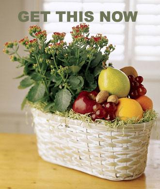 fruit baskets 2